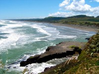 Muriwai Beach, Waitakere City, Auckland, North Island, New Zealand